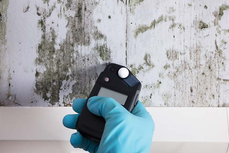 The hand of one of our home inspectors using a moisture meter to test mold on a wall